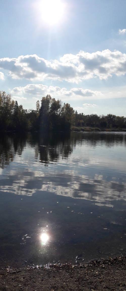 Une belle après-midi au bord d'un lac, à regarder les reflets du soleil dans l'eau